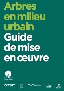 Arbres en milieu urbain : Guide de mise en oeuvre | ECOLOGIE BIODIVERSITE PAYSAGE | Scoop.it