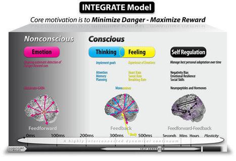 My Brain Solutions | Brain Assessment and Improvement | Cognitive Enhancement Technologies | Scoop.it