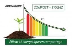 ML Schaller Consulting | NEWS – f | biogas, wind, renewables | Scoop.it