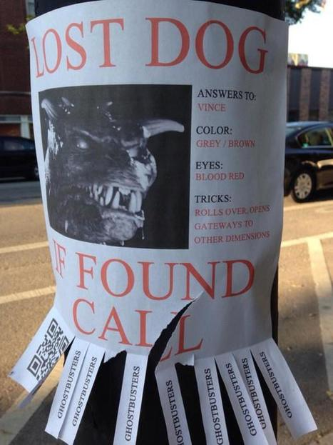 Is This The Best Lost Dog Flyer Ever? | Midnight Movie Club | Scoop.it