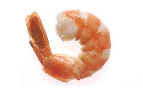 Why You Should Think Twice About Eating Shrimp | All about water, the oceans, environmental issues | Scoop.it