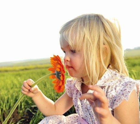 Los niños deben empezar a aprender en la naturaleza, no en el aula | Biblioteca Virtual | Scoop.it