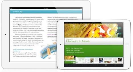 8 millions d'iPad vendus aux établissements scolaires ! | colonie de vacances soutien scolaire révisions | Scoop.it