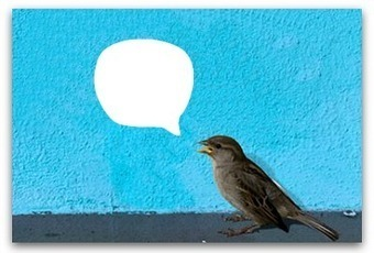 How to be a successful Twitter manager | Communication Advisory | Scoop.it