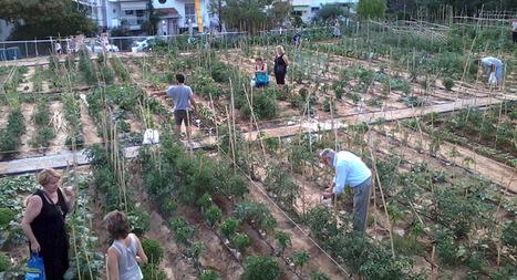 Φωτοβολταϊκό σύστημα άρδευσης στον Δημοτικό Λαχανόκηπο Συκεών από μαθητές   ΔΙΑΧΕΙΡΙΣΗ ΦΥΣΙΚΩΝ ΠΟΡΩΝ - ADMINISTRATION  OF NATURAL RESOURCES   Scoop.it