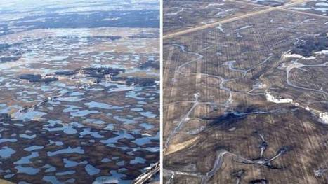 Loss of ponds, wetlands exacerbated Manitoba flooding: report | Wetland developments WA | Scoop.it