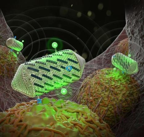 Designing new ultrasound imaging tools with Lego-like proteins | KurzweilAI | Longevity science | Scoop.it