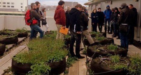À l'ENFA, on forme sur l'agriculture urbaine | Agriculture urbaine et rooftop | Scoop.it