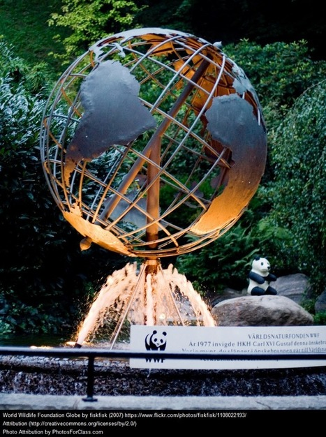 Four New Resources About The World's Different Cultures | GLOBAL GLEANINGS: Culling Content on Global Education, Diversity, Sustainability, and Service. | Scoop.it