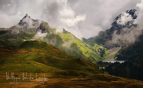 5 conseils sur la photographie de paysages | Nature Photographie | Photo my design | Scoop.it