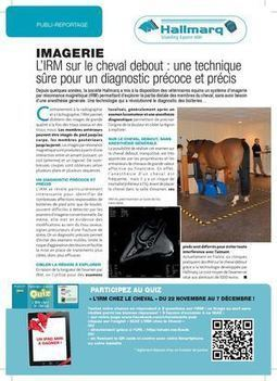 L'irm Chez Le Cheval Debout grâce à la technologie Hallmarq - Calameo | Equidés | Scoop.it