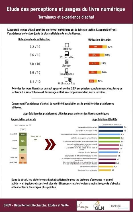 Piratage ou partage : du livre papier et numérique chez les Français - Actualitté.com | infodoc en devenir | Scoop.it
