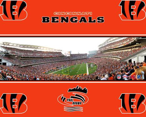 Cincinnati Bengals wallpaper | Football Team Pictures | Scoop.it