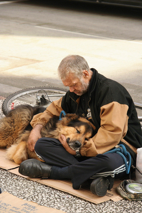 Homeless Humans And Their Dogs Share The Sweetness Of Their Unconditional Love | | SocialAction2014 | Scoop.it