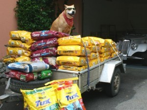 Pet Foods – Truth, Lies, and Outright Deception | The Balanced Canine | Steve Monahan | Scoop.it