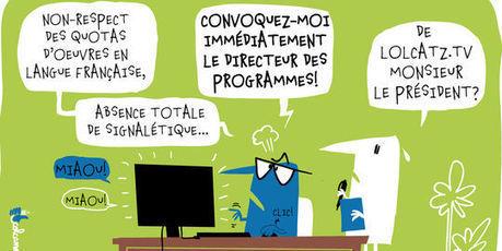 Audiovisuel : des acteurs du Net s'inquiètent du futur rôle du CSA | Libertés Numériques | Scoop.it