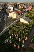 Taking urban agriculture to new heights: New York City rooftop farms | Sustainable Urban Agriculture | Scoop.it