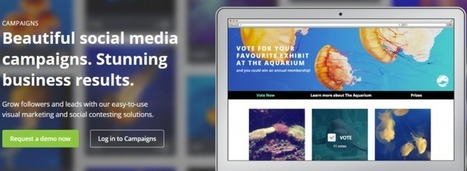 Social Campaigns Drive Leads: Hootsuite Opens Its Campaigns for Free | Social Media | Scoop.it