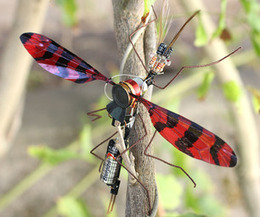 Electromechanical Insect or Flapping Oscillator   Open Source Hardware News   Scoop.it