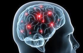 [Hyperconscience] Détection deModèle | Fonctionnement du cerveau & états de conscience avancés | Scoop.it