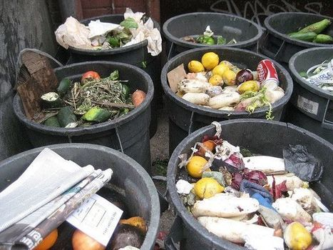 Reducing Food Loss and Waste: An Overlooked Strategy for Creating a Sustainable Food System | World Resources Institute | Sustain Our Earth | Scoop.it