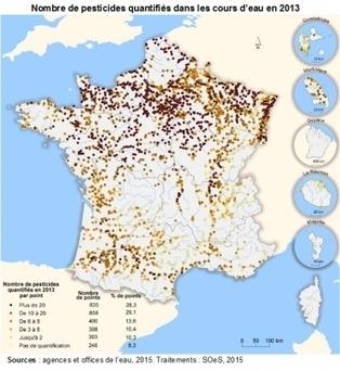 92% des cours d'eau surveillés sont pollués par les pesticides | Maraichage-Horticulture | Scoop.it