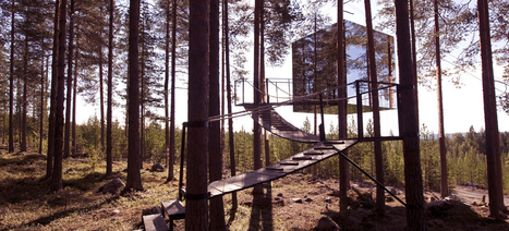7 Charming and Wacky Treehouses You Can Rent For a Night in the Forest | Strange days indeed... | Scoop.it