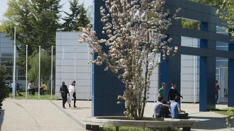 Découvrez le classement Figaro des écoles de commerce   HEC Paris Executive Education @HECParisExecEd   Scoop.it