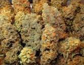 Medical Marijuana Strains | Marijuana Legalization | Scoop.it