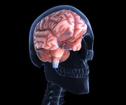 Concerns about anesthesia's impact on the brain | Aspect 2 | Scoop.it