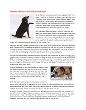 Appropriate Weight Of Dogs To Prevent Joint Pain | Vetz Petz | Scoop.it