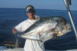Frenzy Charters Offshore Fishing | Frenzycharters | Scoop.it
