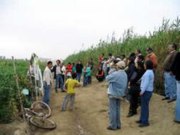 Metodologías participativas y conservación ambiental | PARTICIPANDO | Scoop.it