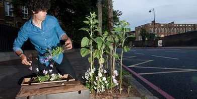Have you heard about guerrilla gardening? - New Zealand Herald | sénamé | Scoop.it