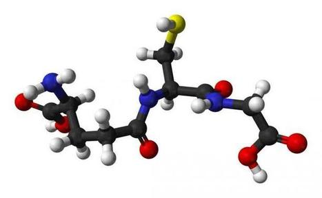 Boosting levels of known antioxidant may help resist age-related decline | Fragments of Science | Scoop.it