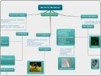 Bacterias Beneficas - Mind Map | bacterias beneficas | Scoop.it