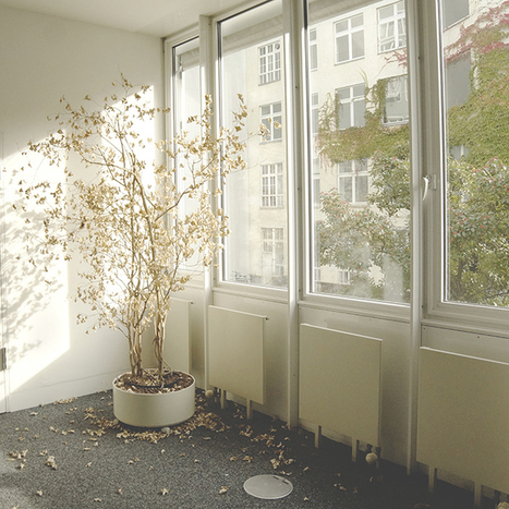 Tunable windows for privacy, camouflage | Amazing Science | Scoop.it