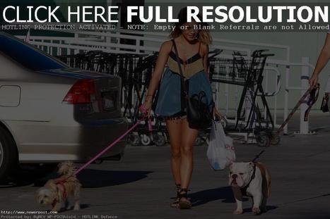 Vanessa Hudgens: cuddles her dog | NewerPost | Scoop.it