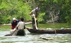 Les Assises du Vivant 2015 - Biodiversité et changement climatique en interaction: Créer et vivre d'autres possibles   développement durable - périntalité - éducation - partages   Scoop.it