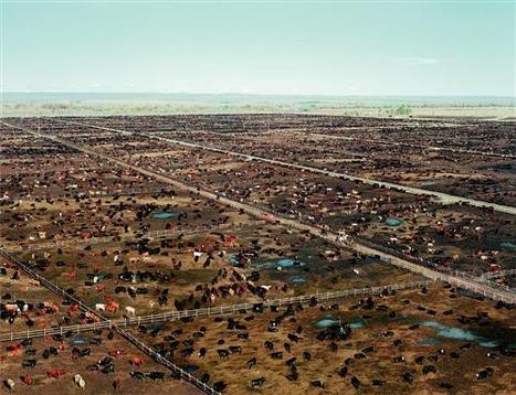 "ANDREAS GURSKY: ""From a World's Spirit's Eye View"" (2007) 