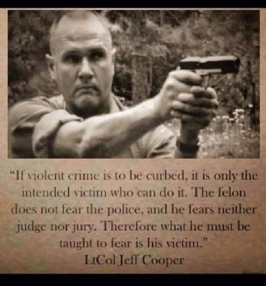 "ONLY ""We The People"" can STOP criminals  ... LL #2A 