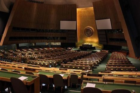 UN body affirms Palestine's right to self-determination | Human Rights and the Will to be free | Scoop.it