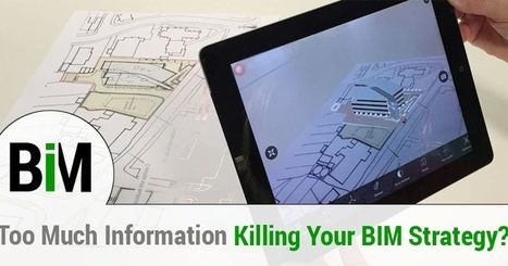 Is Too Much Information Killing Your BIM Strategy?   Architecture Engineering & Construction (AEC)   Scoop.it