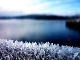 Ice swimming in Helsinki | Finland | Scoop.it