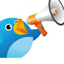 El 73% de los anunciantes estadounidenses utiliza las redes sociales principalmente para difundir mensajes | Links sobre Marketing, SEO y Social Media | Scoop.it