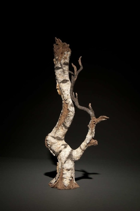 Beautiful Ceramic Teapots Shaped Like Weathered Tree Parts | Cats & Teapots | Scoop.it