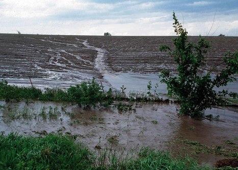 Soil Isn't Sexy | GarryRogers Biosphere News | Scoop.it