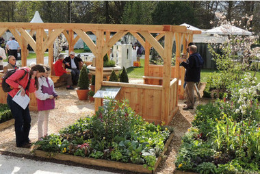 Pennard Plants and National Botanic Garden of Wales get silver guilt at RHS Flower Show for edible garden | edible landscaping | Scoop.it