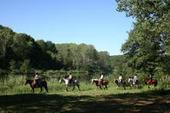 Les clientèles du tourisme Equestre | L'espace info pro des offices de tourisme de Bièvre-Valloire | Scoop.it