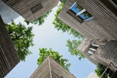 """House for trees"" built in Ho Chi Minh City 